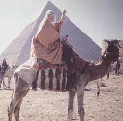 Grandma_Otis_Camel
